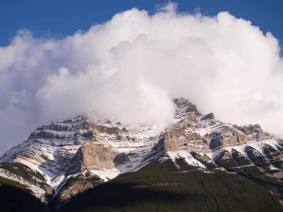 A mountain with its base covered in trees and its top vanishing into the clouds.